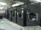 máy sấy công nghiệp Primus
